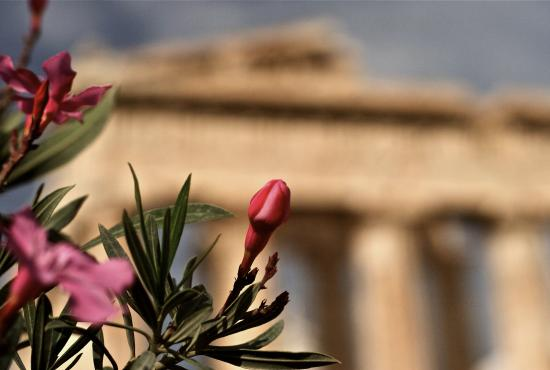 Piraeus Acropolis with Lunch and transfer to the Airport