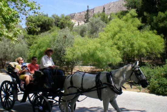 Piraeus-  New Acropolis Museum & Athens City Tour
