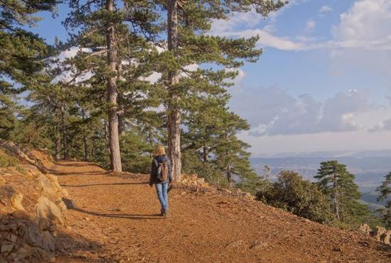 Limassol – Troodos Trekking