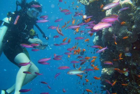 Antalya tour – Diving
