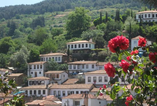sirince_village_and_roses.jpg