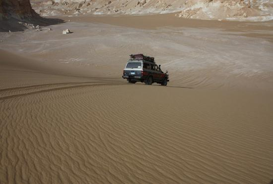 Suez port-Camel and Jeep Safari Tour