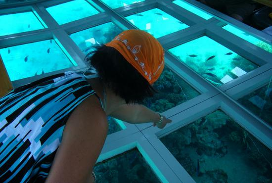 Hurghada port- Glass Bottom Boat