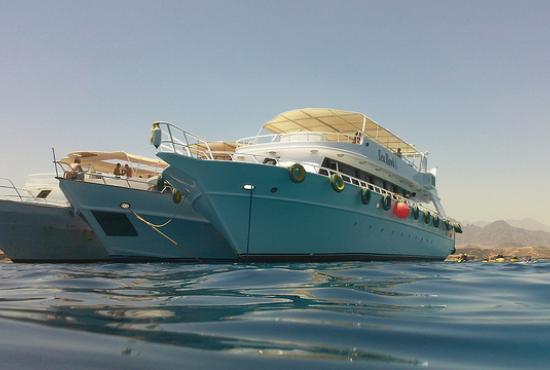 Hurghada port-Snorkeling at Safaga