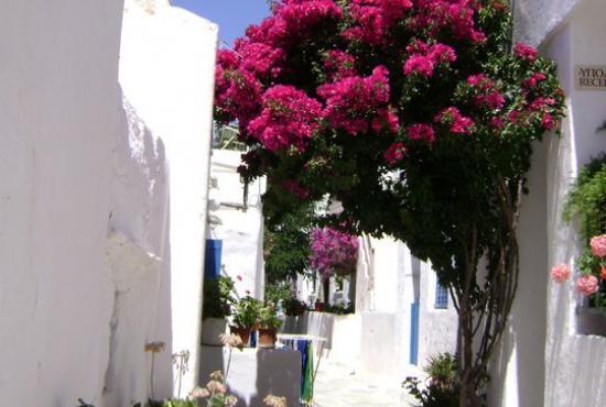Island Hopping Package 3 days Athens-Santorini-Ios-Athens
