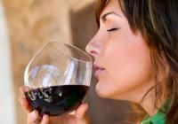 Katakolon Tour to Mercouri Winery and Vineyards