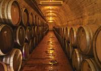 Santorini - Tour to Winery, Prehistoric Museum & Oia Town