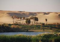 Suez port-Pyramids and the river Nile Tour