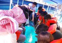 Safaga port Glass Bottom Boat