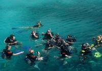 Hurghada port-Snorkeling at Safaga