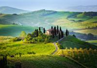 Tuscan Countryside and Wine Tasting